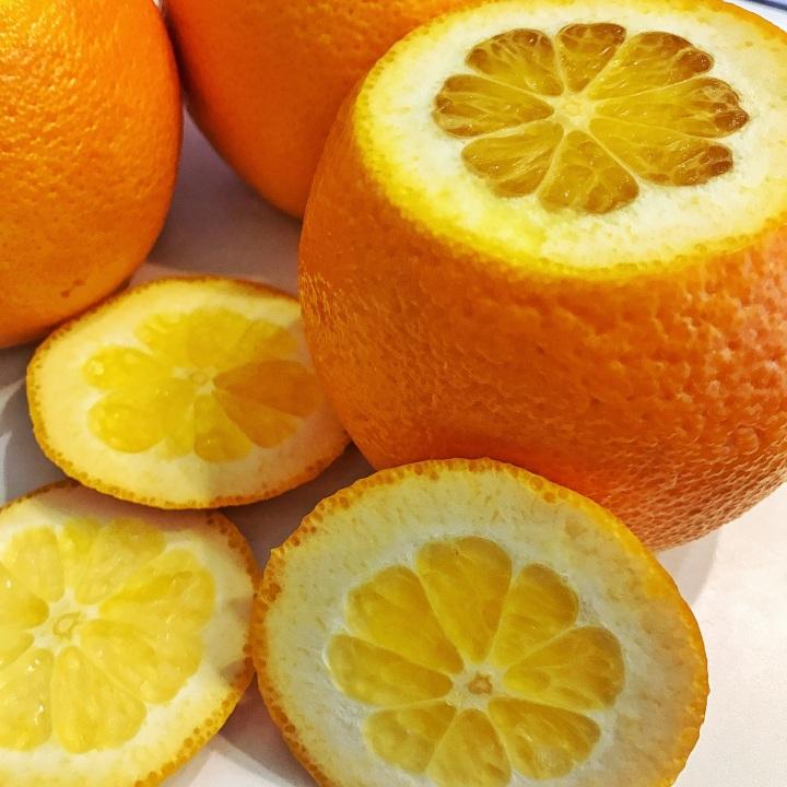 16 - oranges